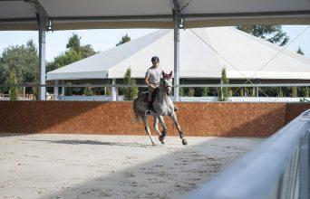 HORSE RIDING & SPORT